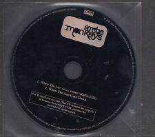 ARCTIC MONKEYS When The Sun Goes Down RARE 2 track EU PROMO CD SINGLE