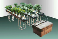 HYDROPONICS Build Your Own Hydroponic System, 463 pages, have it TODAY