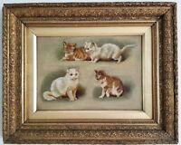 Antique Oil Painting Kittens on Canvas 19th Century Cats