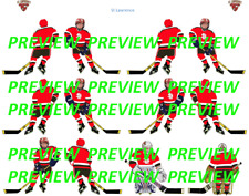 Coleco Table Hockey College St Lawrence College Red Team Custom Decal Sheet