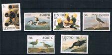 Birds Basutoland Stamps (Pre-1966)