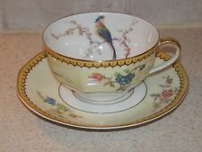 THEODORE HAVILAND CHINA BLOIS PATTERN CUP AND SAUCER SET EXCELLENT!