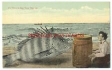 Bizarre EXAGGERATION - TIME TO SAY PRAYERS - HUGE FISH Scares MAN ca1908 WEIRD!