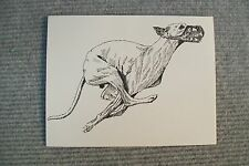 Whippet Pen and Ink Stationary Cards, Note Cards, Greeting Cards. 10 pack.