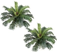 "TWO 25"" Cycas Palm Artificial Tree Silk Plants 025"