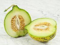 Melon Seeds Alacati's organic non gmo seeds Ukraine 10 seeds D