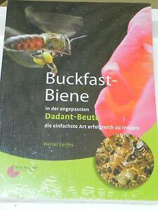 """Buckfast-Biene""in der Dadant-Beute, W.Gerdes,Imker,Imkerei,Imkerbuch,bee"