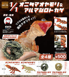 So-Ta Capsule Toy 1:1 Nephrurus amyae & Armadillo lizard Completed Set 4pcs