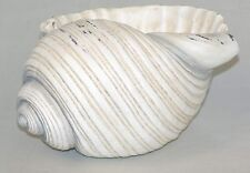 "9"" Nautical Conch Shell Planter Bowl Polystone NEW"