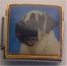 Bull Mastiff Face Painted Portrait Dog Enamel Italian Charm 9Mm Classic Diy New