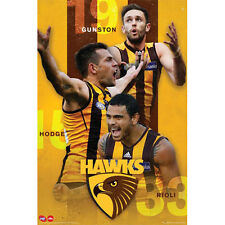 AFL - Hawthorn Hawks Players POSTER 61x91cm NEW * Gunston Hodge Rioli footy