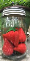 7  Vintage Strawberry Pin Cushions Collection Primitive Sewing