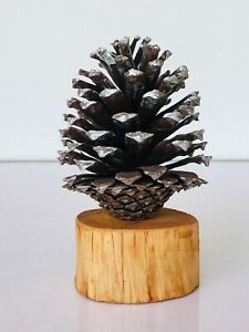 Wooden vase, wooden flower, table decoration, hand made free shipping