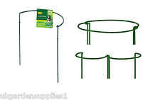 Pack of 2 x 90cm x 52cm Garden Hoops - Plant Support - Garden Plant Supports
