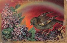Rainbow Background of Brown Bird Perched on Lovely Lilacs-1910 Postcard - 666/12