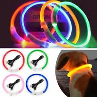 Rechargeable USB LED Light-up Flash GLOW COLLAR Pet Dog Safety Adjustable PR
