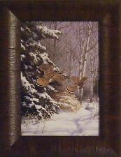 RUFFED GROUSE by Richard Plasschaert 10x13 FRAMED PRINT Game Birds Snow