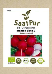 BIO Radieschen Samen Radies Saxa 2 Gemüsesamen Radies Saatgut milde Sorte Saat