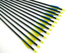 """12 Shiny Black® 34"""" Fiberglass Target Practice Arrows, Replaceable Screw-In Tip"""