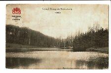 CPA - Carte Postale -Belgique Molenbeek- Grand Etang 1909 VM3486