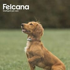 Felcana Go Dog Cat Activity Monitor