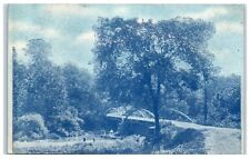 1907 Fishing near Bridge over Sugar Creek, Beach City, Ohio Postcard