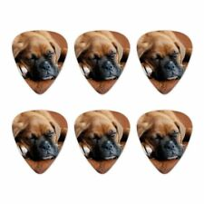 Boxer Puppy Dog Sleeping in Leather Chair Novelty Guitar Picks Medium - Set of 6