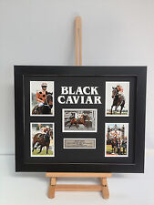 PROFESSIONALLY FRAMED, SIGNED BLACK CAVIAR/LUKE NOLEN PHOTO COLLAGE WITH PLAQUE.