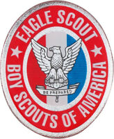 BOY SCOUTS OF AMERICA EAGLE SCOUT DOMED DECAL STICKER BSA NEW 3""