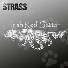 IRISH RED SETTER M1 CANE APPLICAZIONE FERRO STIRO hotfix 22cm largo