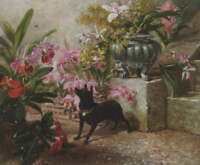"""perfect oil painting handpainted on canvas""""a dog in the garden """"N14029"""