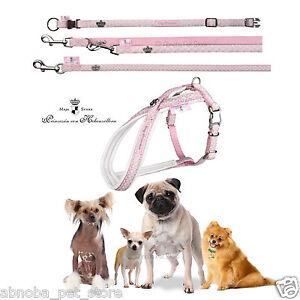 Modern Art Dog Princess Baby Pink Nylon Collar Harness and Leads XXXS - L Sizes