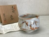 Y1581 CHAWAN Shino-ware signed box Japanese bowl pottery Japan tea ceremony