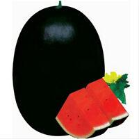20pcs Riesige schwarze Wassermelone Samen Gesunde Essbare Gartenpflanze Pflanzen
