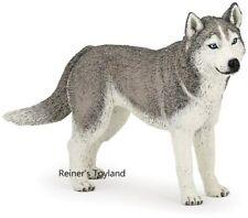 Figur / Spielfigur Papo Hund - 54035 Sibirischer Husky / Sibirian Husky - NEU