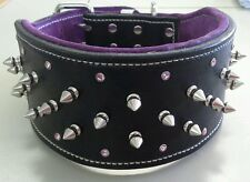 XX-Large Black & Purple Studded Suede Leather Dog Collar with Crystals - Staffy