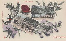 Hôtel Robert Repos du Midi STE-ROSE Quebec 1907-13 Carte Fantaisie Pinsonneault