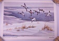 Vintage Maynard Reece Print Return of Spring Canvasback Ducks Winter Iowa