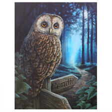 Oiseaux sur Toile ~ Fantasy Art Par Stokes & Parker ~ MYTH & MAGIC Hibou & Raven
