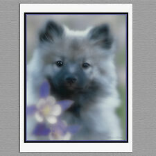 6 Keeshond & Columbine Puppy Blank Photo Art Note Greeting Cards