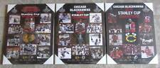 Set of 3 Chicago Blackhawks Stanley Cup Championship Picture Plaques 2010,13,15