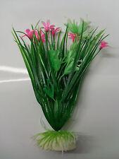 plante clochette
