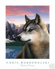 NEW Rockies Wolf 16x20 Art Print Poster by Dobrowolski