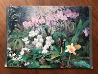 Dung-Feng St Taipei Taiwan ROC Flower Garden Used Postcard Written not Posted VG