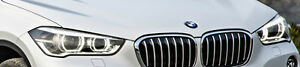 BMW Brand F48 F49 X1 2016+ OEM Genuine EURO Clear Corner LED Headlights NEW