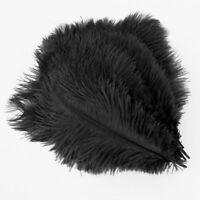 20 x natural ostrich feather 25-30 cm black party decoration FP