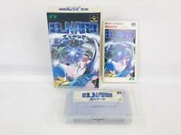 ELNARD Super Famicom Nintendo Game Boxed Import Japan sf