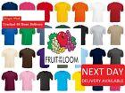 Fruit of the Loom 100% Cotton Plain Blank Men's Women's Tee Shirt Tshirt T-Shirt