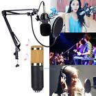 BM800 Condenser Microphone Kit Studio Recording Mount Boom Stand Sound Mike Set