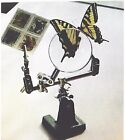 ALL-PURPOSE 3rd-HAND MAGNIFIER Insects/Stamps/Sports/Fly-Tying/Fish & MORE! L@@K
